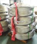 304不锈钢编织波纹管网套